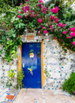 Vine covered wall with blue door