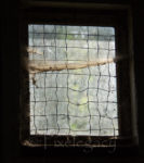 Window with cobwebs in horse barn